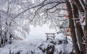 Картинка Зимние Камень Снега Скамья Ветвь Природа