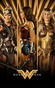 Картинки Чудо-женщина (фильм) Чудо-женщина герой Воин Втроем Diana, Hippolyta, Connie Nielsen, Robin Wright кино Девушки Знаменитости