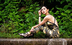 Обои Фотомодель Брюнетка Сидящие Взгляд Zenia Tong Девушки