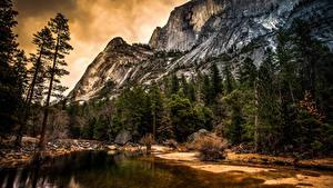Фотография США Парки Озеро Пейзаж Йосемити Ели Скала Природа