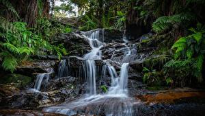 Фотография Водопады Скала Мох Природа