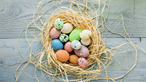 Картинка Праздники Пасха Доски Гнездо Яиц Еда