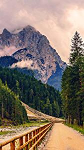 Картинка Горы Дороги Альпы Ели Забор
