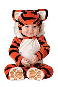 Фотография Тигр Белом фоне Младенцы Униформа Улыбается