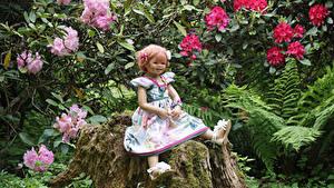 Фото Парки Пень Девочка Куклы Платья Мха Grugapark Essen Природа