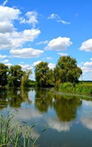 Фото Озеро Небо Деревья Облака