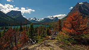 Фотография Штаты Парк Гора Озеро Осенние Пейзаж Ели Saint Mary Glacier NP