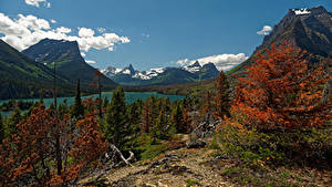 Фотография Америка Парк Гора Озеро Осенние Пейзаж Ели Saint Mary Glacier NP Природа