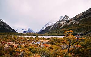 Картинки Аргентина Горы Озеро Осенние Laguna Torre Природа