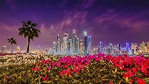Фотография Небо Дубай Объединённые Арабские Эмираты Небоскребы Здания Ночные Marina Города