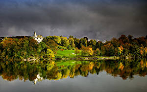 Картинка Норвегия Берген Осень Лес Заливы Gamlehaugen