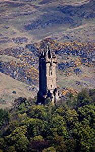 Фото Шотландия Гора Дерева Башни Wallace Monument Stirling, Stirling