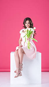 Фото Тюльпаны Цветной фон Шатенка Сидя Платья Улыбка девушка