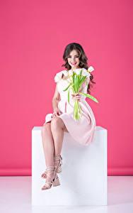 Фото Тюльпаны Цветной фон Шатенка Сидящие Платье Улыбка Девушки