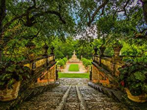 Фотографии США Парки Фонтаны Флорида Майами Ветки Кустов Лестница Природа