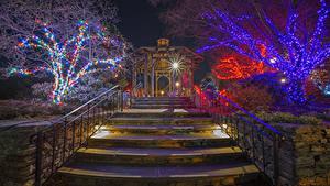 Фотографии Рождество Праздники Штаты Парки Лестница Дерево Гирлянда Лучи света Ночные Boylston город