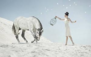 Фотографии Лошадь Шатенки Песок Животные Девушки