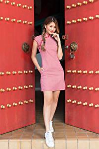 Картинка Азиаты Двери Поза Платье Руки Коса Шатенки Взгляд молодая женщина