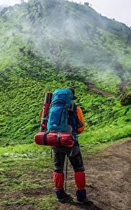 Картинки Гора Тропинка Путешественник Вид сзади Рюкзак Тумане