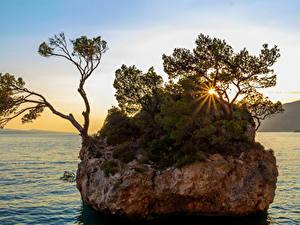 Фото Хорватия Рассветы и закаты Залив Утес Деревья Лучи света Brela Природа