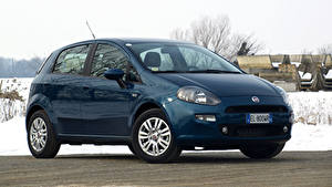 Фото Fiat Синий Металлик 2012-18 Punto 5-door Автомобили