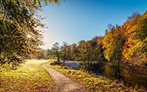 Фотография Осенние Реки Англия Трава Тропинка Лучи света River Wharfe, Yorkshire Природа