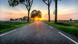 Фото Рассветы и закаты Дороги Трава Деревья Асфальт Природа