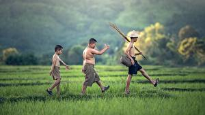 Обои Азиаты Втроем Мальчики Шляпа Шорты Трава Прогулка Дети