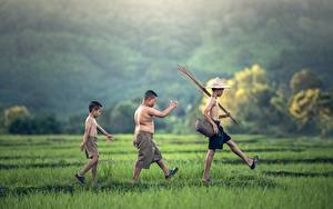 Обои Азиаты Втроем Мальчики Шляпы Шорт Траве Прогулка Дети