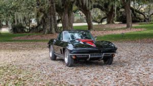 Фотографии Chevrolet Старинные Металлик Черная 1967 Corvette Sting Ray L68 427-400 HP Автомобили