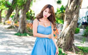 Обои Азиатка Боке Платье Шатенка Смотрят Девушки