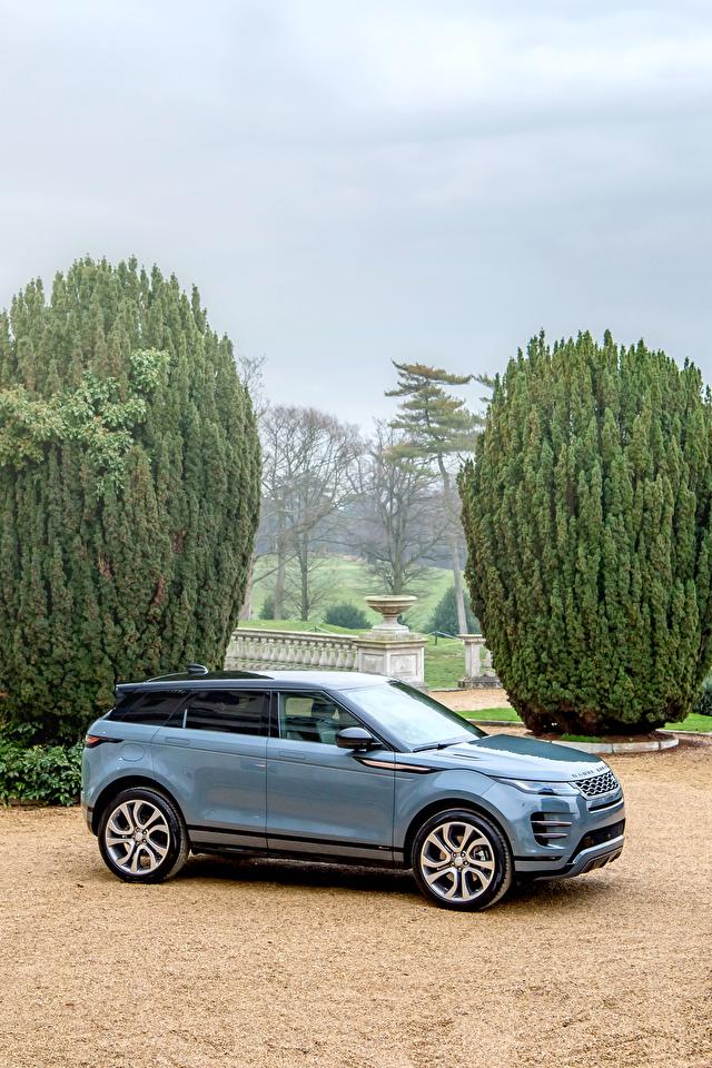 Картинка Land Rover Кроссовер 2019 Evoque R-Dynamic First Edition Worldwide Серый Металлик Автомобили 640x960 для мобильного телефона Range Rover CUV серая серые авто машины машина автомобиль