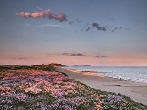 Обои Англия Берег Рассвет и закат Пляже Southbourne Beach