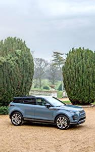 Картинка Range Rover CUV Серая Металлик 2019 Evoque R-Dynamic First Edition Worldwide авто