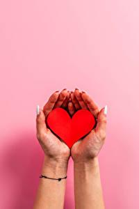 Фото День святого Валентина Цветной фон Руки Маникюра Сердца