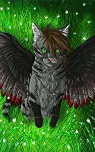 Фотография Волшебные животные Кот Крылья Фантастика