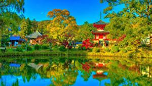 Картинка Япония Киото Парки Храм Пагоды Пруд Осень Кусты Деревья Daikaku-ji