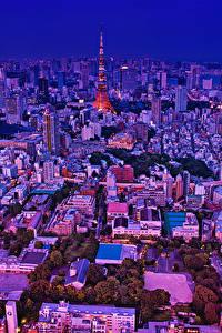 Фотография Япония Токио Здания Вечер Мегаполиса