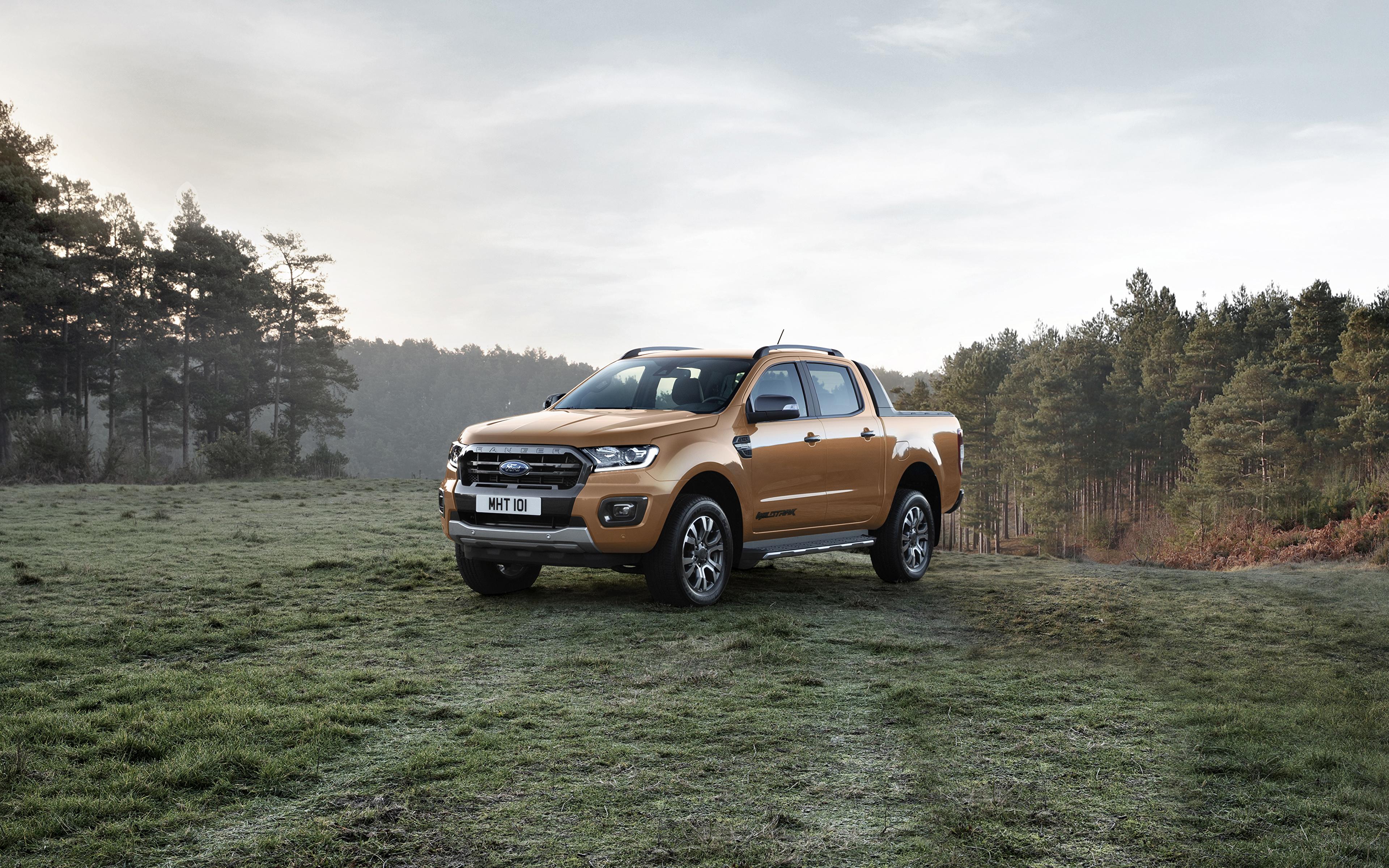 Обои для рабочего стола Форд 2019 Ranger Wildtrak Пикап кузов Металлик Автомобили 3840x2400 Ford авто машина машины автомобиль
