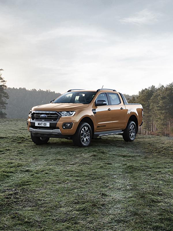 Обои Форд 2019 Ranger Wildtrak Пикап кузов Металлик Автомобили 600x800 Ford авто машина машины автомобиль