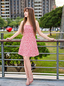 Обои Азиатки Шатенка Платье Позирует