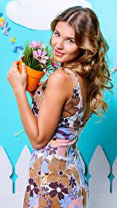 Фотография Шатенка Взгляд Платье Цветочный горшок девушка
