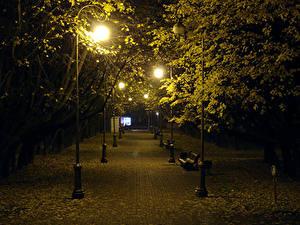 Обои Беларусь Парк Осень Дерево Ночью Уличные фонари Скамейка Лист Minsk Природа
