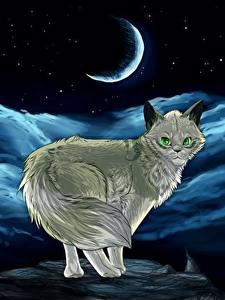 Картинка Коты Рисованные Полумесяц Ночь животное