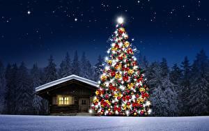 Фотография Дома Леса Ночные Елка Снег Природа