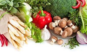 Фотография Овощи Грибы Перец Чеснок Белый фон Пища