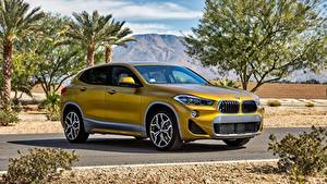 Картинка BMW Сбоку Металлик F39, X2 M Автомобили