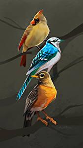 Фотографии Птицы Рисованные Втроем Ветки животное