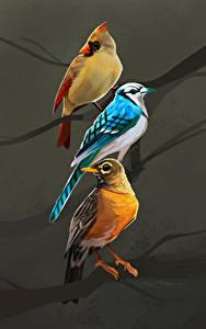 Фотографии Птицы Рисованные Втроем Ветки Животные