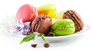Фото Печенье Белый фон Тарелка Макарон Разноцветные Пища